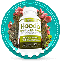 Natural Hoodia Gordonii Appetite Suppressant